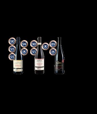 Michele Castellani Cinque Amarone by Allegro Fine Wines